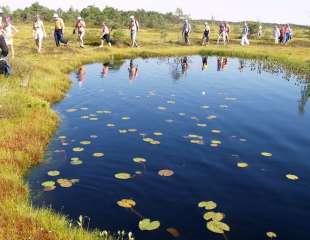 Bogshoeing-on-the-Peatlands-of-Estonia